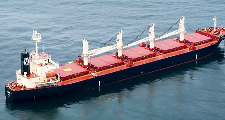 dry bulk carriers