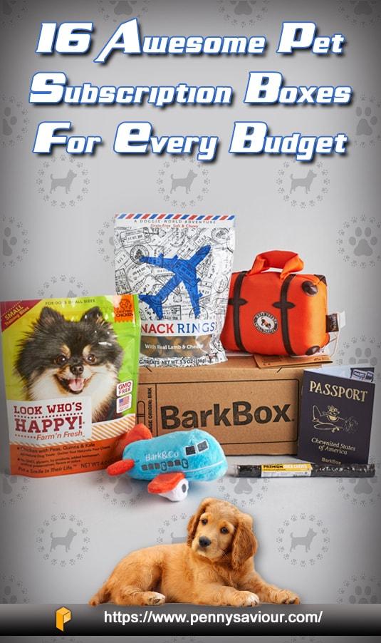 Pet Subscription Boxes Pinterest Image