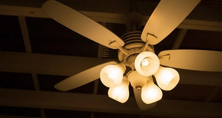 southfork lighting fans