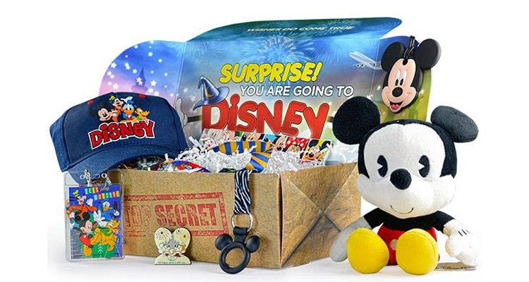 Walt Life Surprise Box