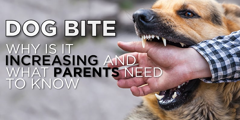 Dog Bite - Why Is It Increasing And What Parents Need To Know