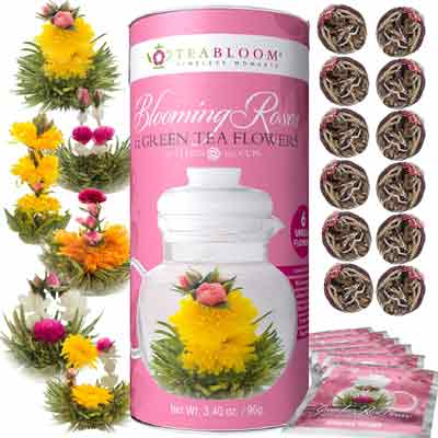 12 jasmine flowering teas with gift canister