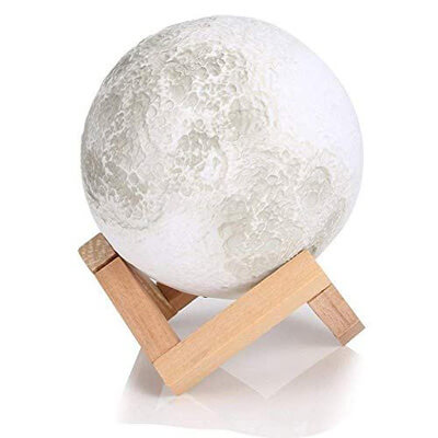 enchanted moon lamp
