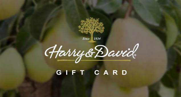 Harry And David Gift Card